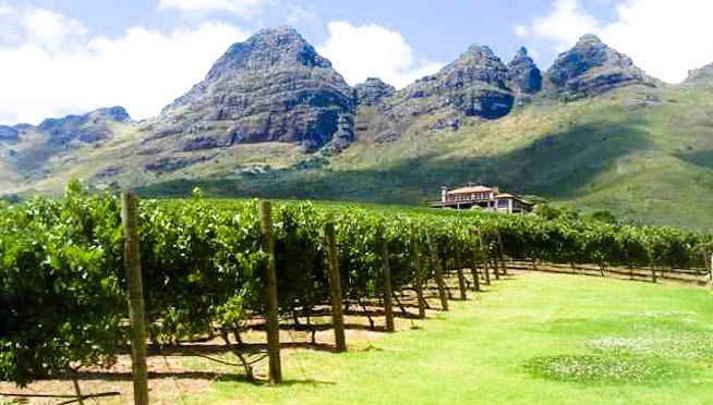 Winelands Stellenbosch